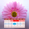 Mein Menstruationskalender