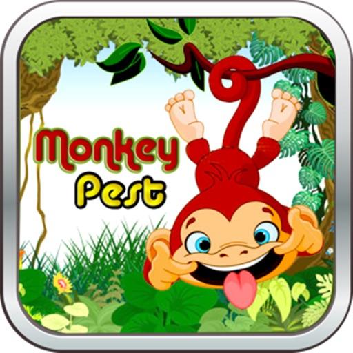 Funny Monkey Business - Free Monkey Game iOS App