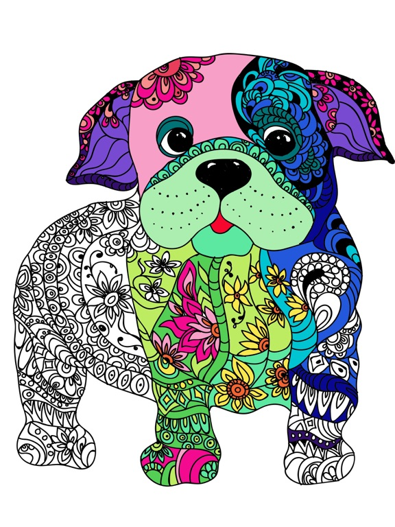 Mandala Hond Kleuren Voor Volwassenen Premium App Voor