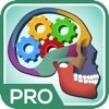 Ultimate Anatomy Quiz & Trivia Pro anatomy and physiology