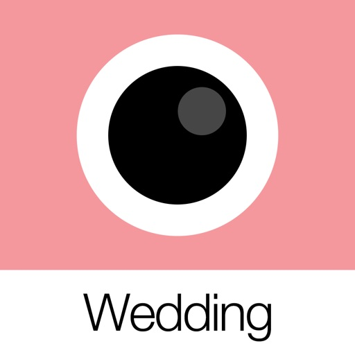 Analog Wedding (模拟婚礼)