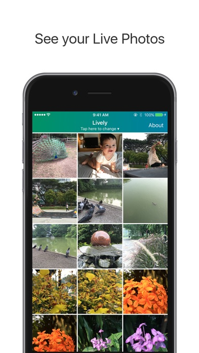 Lively - Export Live Photo to GIF and Movie Screenshot