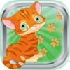 Katze reden Geräusche und Klänge Kätzchen miaut