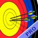 Archery Score Pro
