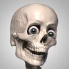 Proko - Skelly - Poseable Anatomy Model for Artists  artwork