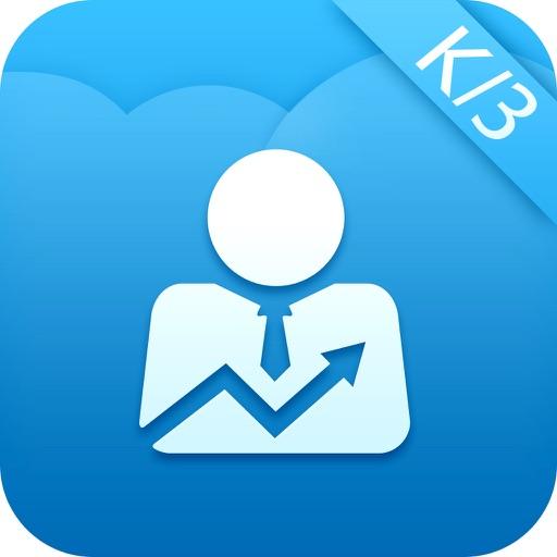 e销售 iOS App