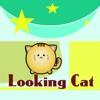 Looking Cat