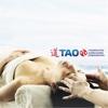 TAO für AMM & TCM