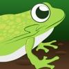 Ленивый Лягушки Пруд Гонки Про - сумасшедшая аркада быстрый гоночный