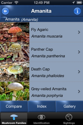 Mushroom Id North America - Fungi Identification Guide to Toadstools and Mushrooms screenshot 2