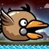 Tappy Sparrow - PRO