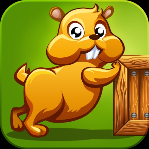 Sokoban Box Moving PRO iOS App