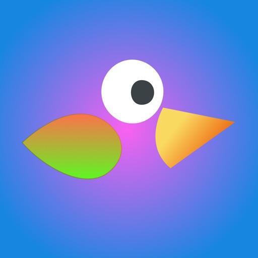 Crazy Birdie Bird