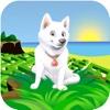 Cool Dog 3D - Mein Weihnachten Schoßhündchen-Labyrinth-Rennspiel für Mädchen & Jungen Kostenlos
