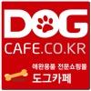 도그카페 - dogcafe