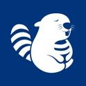 Beevr icon