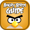Guide for Angry Birds!