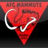 AFC Kuchen Mammuts