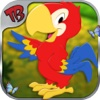 birds rescue - Take care for your innocent Bird - care & dress up kids game