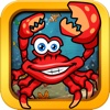 Ocean and Sea Animal puzzles and Games for toddlers,  kids and preschoolers