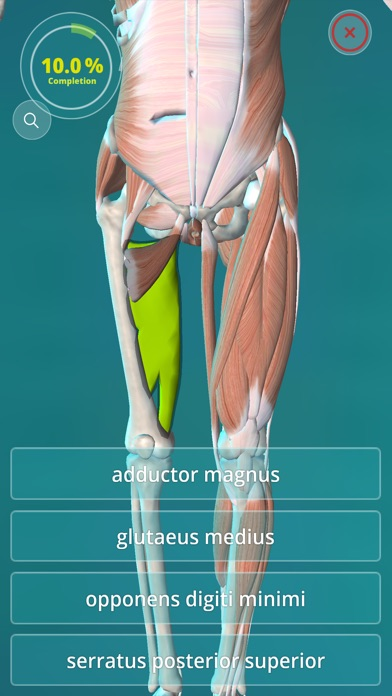 Anatomy Of A Combine : Anatomy quiz muscles and bones app download android apk