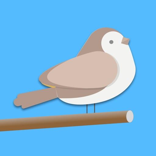 Птица Общая - Слово Викторина игры