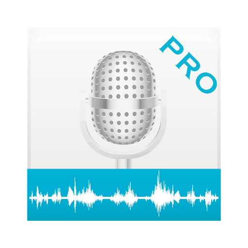 Voice Notes Pro - Recorder, Notepad