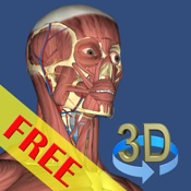 3D Bones and Organs (Anatomy) Mobile App Icon