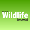 Australian Wildlife Secrets