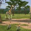 Biofeedback de cohérence cardiaque : Le Safari