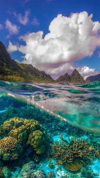 The National Park Of American Samoa Wallpapers 1