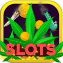 Weed Marijuana Casino Slots - Free Marijuana Gambling Game icon