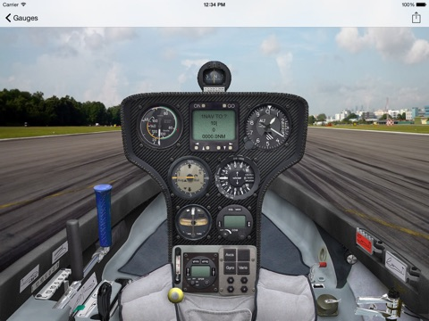 FSX DG-808S screenshot 1