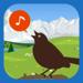 Cui-cui! Chants d'oiseaux d'Europe de l'Ouest