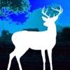 Africa Hunt Deer in Safari game