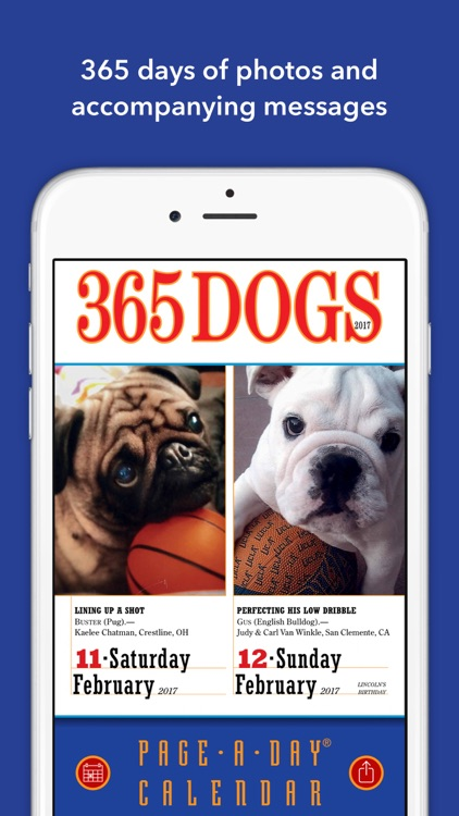 365 dogs page a day calendar 2017 by oceanhouse media