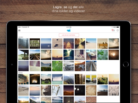 iPad-skjermbilde 1