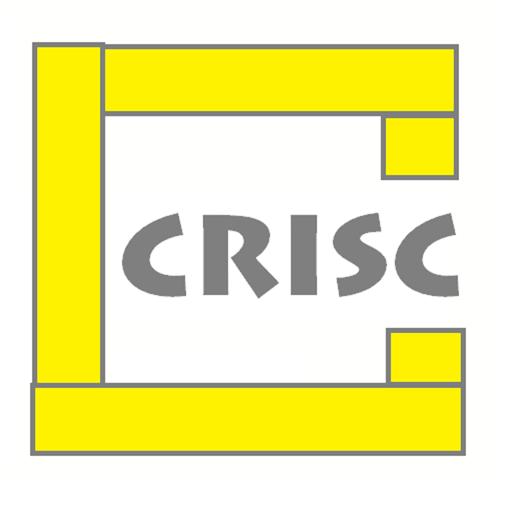 CRISC exam prep and braindump
