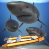Hungry Shark Attack 3D