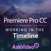 Timeline Course For Premiere Pro CC Programos iPhone / iPad