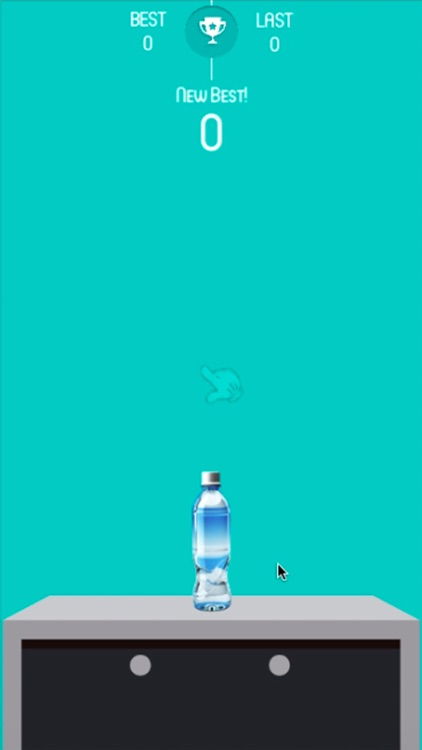 water bottle flip game