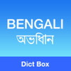 Bengali Bangla English Dictionary & Translator