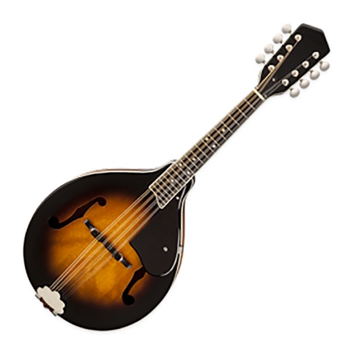 Introduction To Playing The Mandolin - YouTube