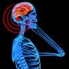 Elektromagnetische Strahlung Survival Guide: Lösungen -Protect Yourself & Familie