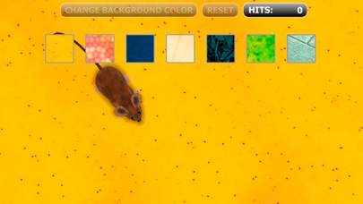 Download Catch the Mouse Cat Game for iPhone App