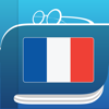 French Dictionary & Thesaurus +English Translation