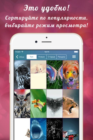 Обои iPhone и обои iPad screenshot 3