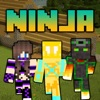 Ninja Skins - Best Skins for MCPC & PE Edition