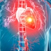 Heart Disease Glossary:Pathophysiology Cheatsheet
