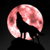 iWolf - Optimized Browser for forum and privacy